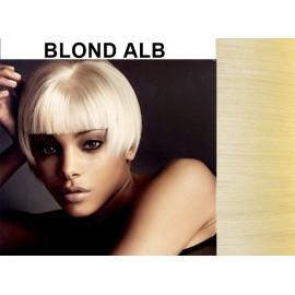 Bretoane cu Calota Blond Alb