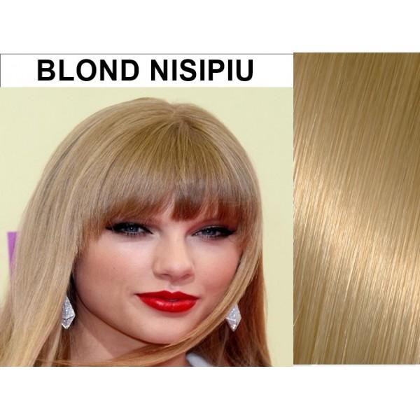 Bretoane cu Calota Blond Nisipiu
