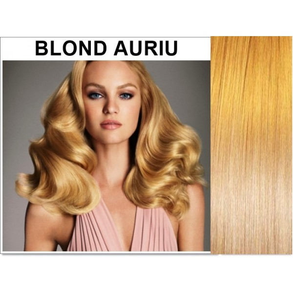 Set Easy Clip-On DeLuxe Blond Auriu