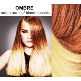 Extensii Clip-On Diamond Ombre Saten Aramiu / Blond Deschis